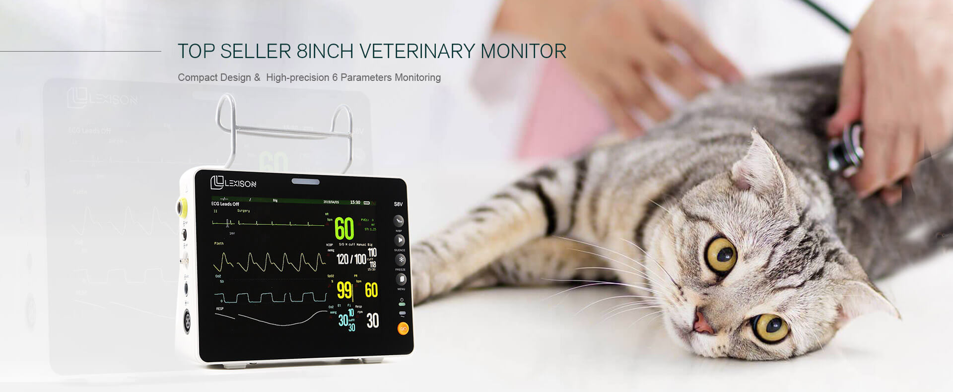 TOP SELLER 8inch Veterinary Monitor