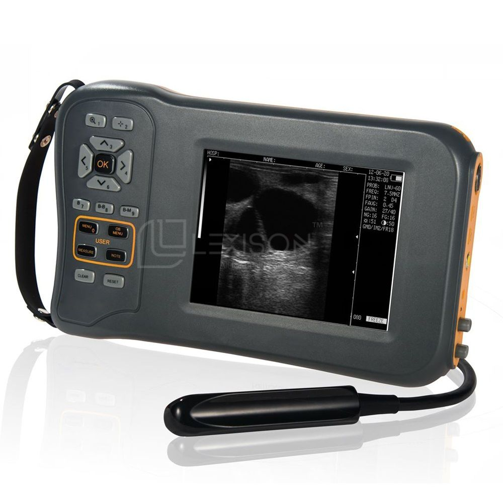 PRUS-BL600V Veterinary Ultrasound Scanner